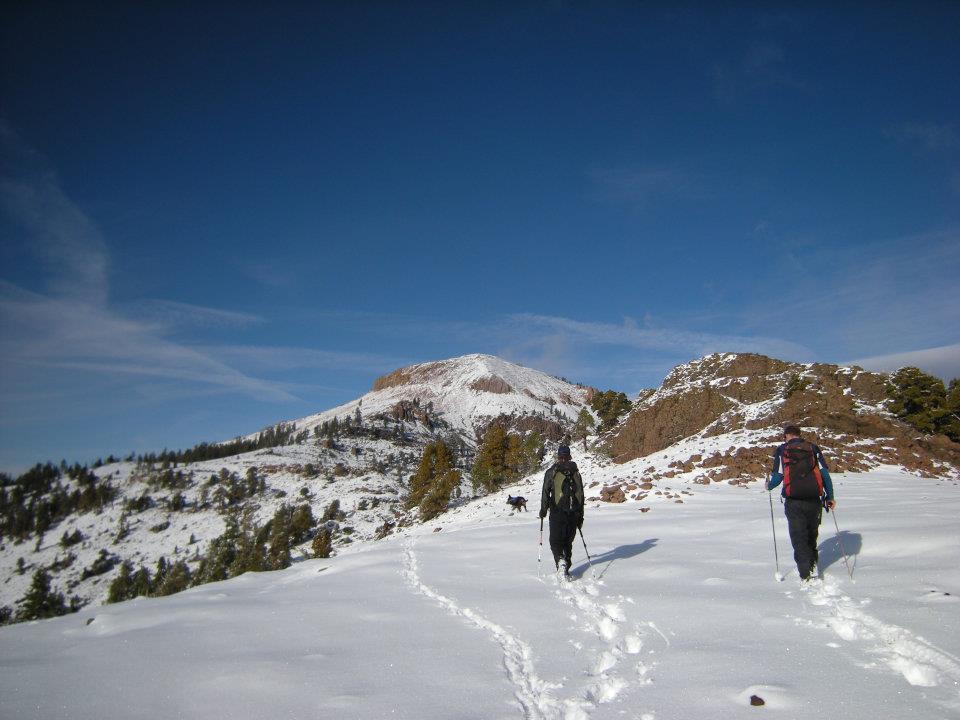 Bald Peak Snowy hike