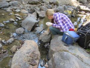 water sampilng