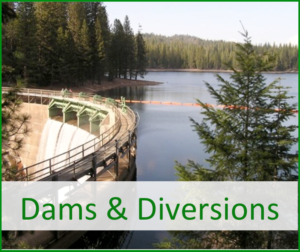 Dams and Diversions