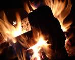 campfire nature activities kids