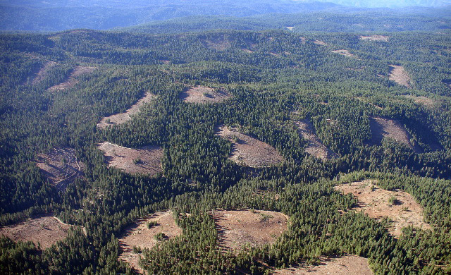 South Fork of the Mokelumne watershed (Note: visual group retention patches)