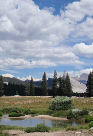 Tuolumne Meadows in Yosemite