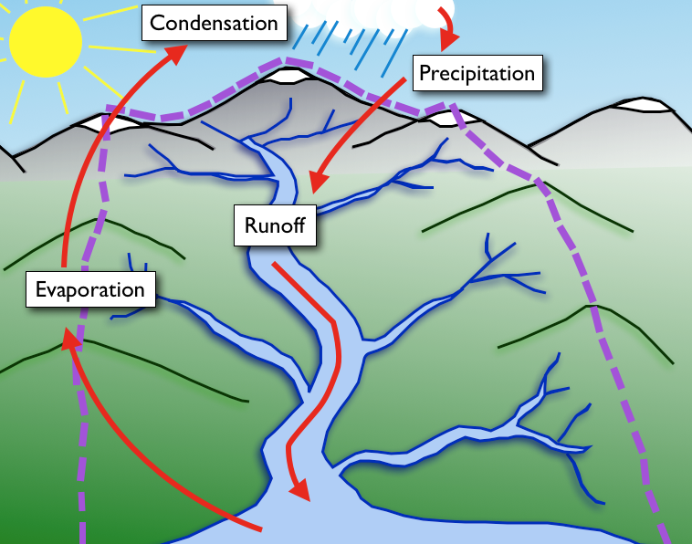 The water cycle cserc water cycle ccuart Choice Image