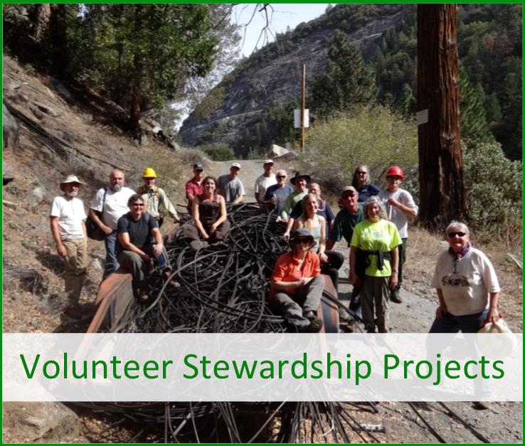 Volunteer Stewardship Projects