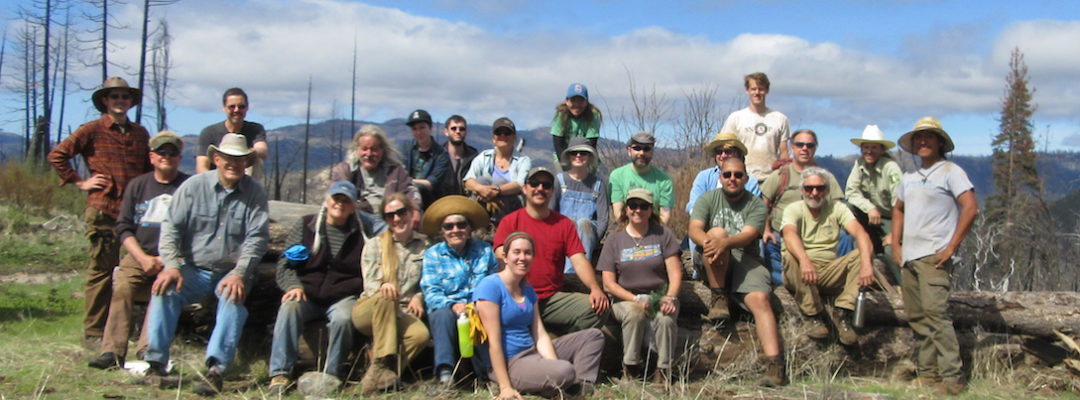 volunteer tree planting slider