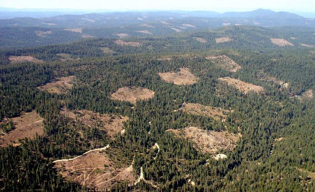 Blue Creek Watershed north of Highway 4