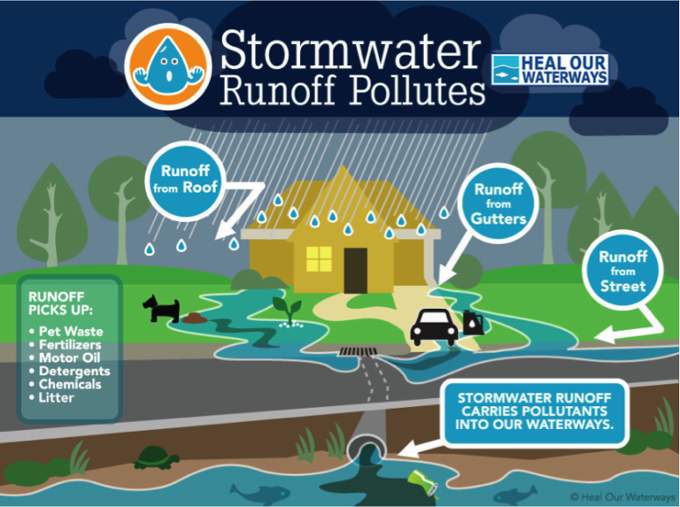 What You Can Do To Reduce Storm Water Pollution Cserc