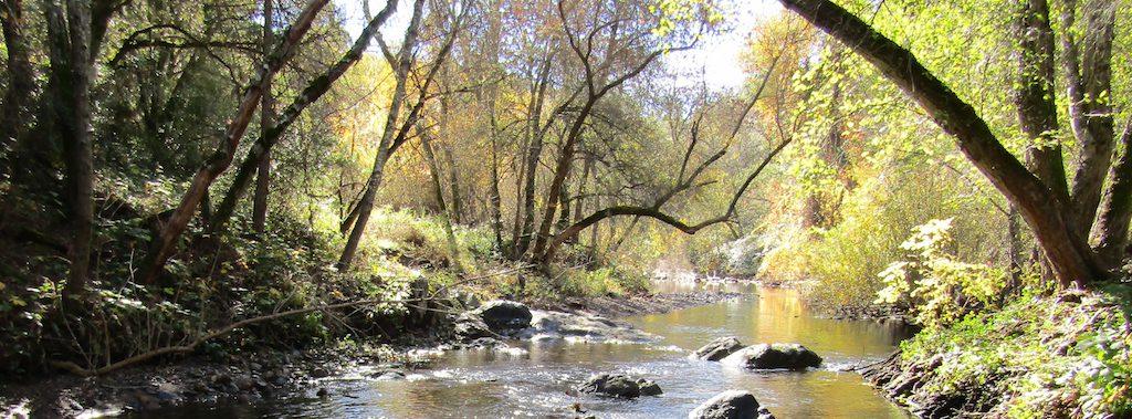 foothill stream slider